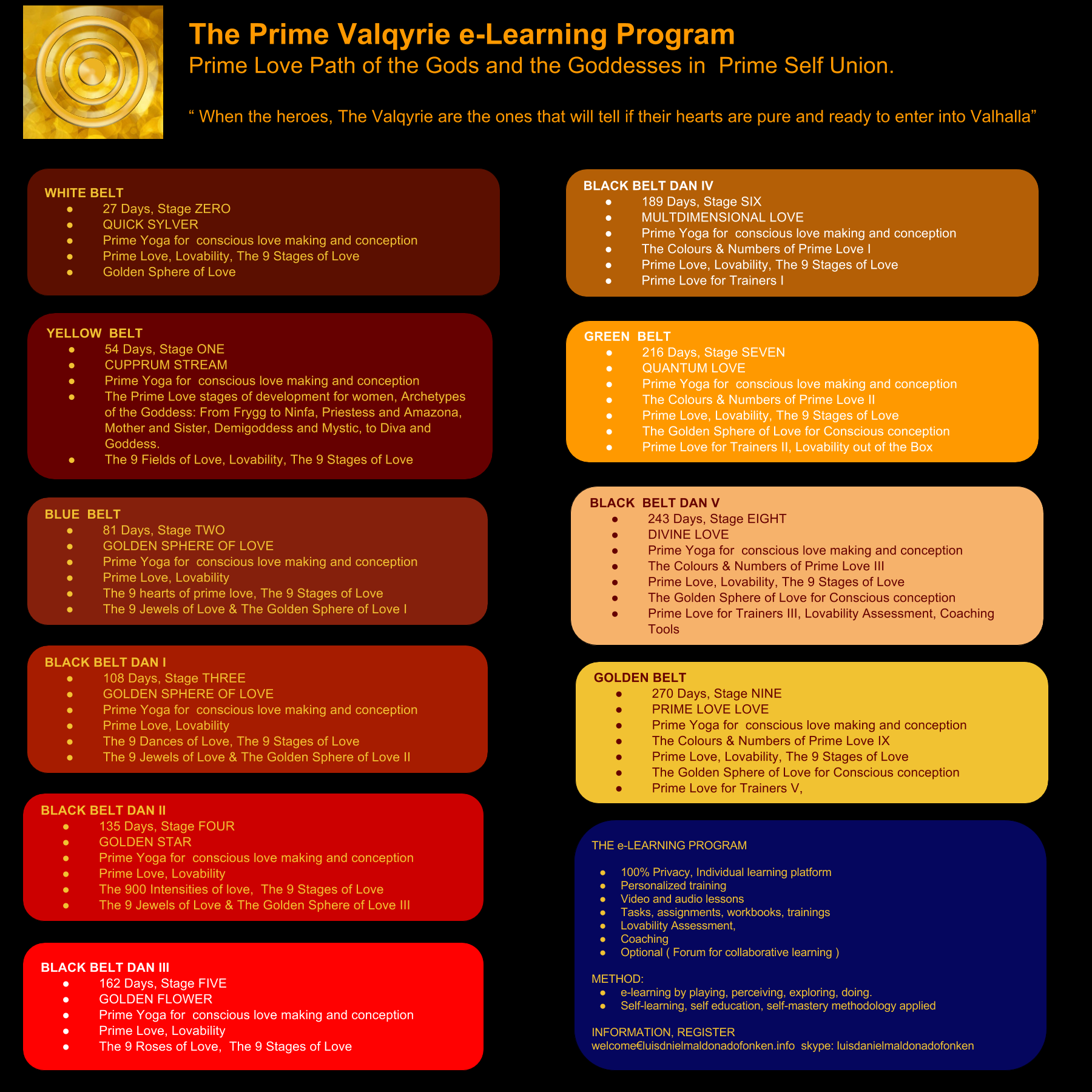 The-Prime-Valqyrie-e-Learning-Program